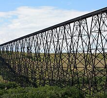 Lethbridge High Level Bridge by Alyce Taylor