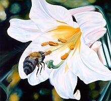 """""""Natural Seduction"""" - large lily painting with a bee by James  Knowles"""
