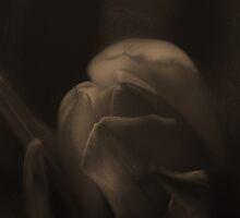 Darkness by RosiLorz