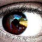 Through His Eyes by Josh Kennedy