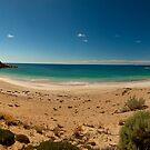 shell beach by adouglas