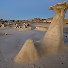 Bisti Hoodoo at Dusk by TheBlindHog