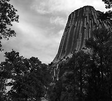 Devils Tower 2 by J. L. Gould