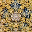 'Precious Clusters' by Scott Bricker