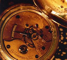 Antique Watch Innards by Glenn Cecero