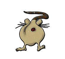 rat's ass!!!! Photographic Print