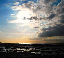 Storm by Dawn B Davies-McIninch