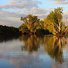 Yellow Waters, Kakadu, At Sunset by Michael Kilpatrick