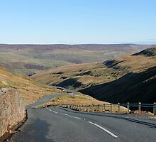 Buttertubs Pass by John (Mike)  Dobson