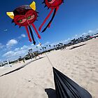 Eyes in the Sky (Seal Beach, California) by Brendon Perkins