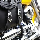 HD buckles by Ell-on-Wheels
