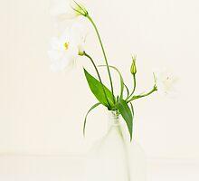 still life 2 by nadine henley