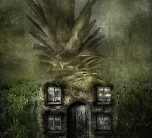 Pineapple Cottage by Amanda Ryan