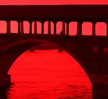 Ponte Coperto (Covered Bridge) Pavia, Italy 2010 by Igor Pozdnyakov