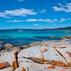Bay of Fires by Patrick Robertson