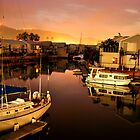 Knysna Quays at Dusk by Tom Mostert