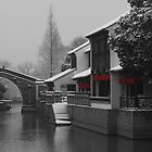 Suzhou Winter by Mark Bolton