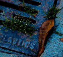 Plastics by Paul Fetters