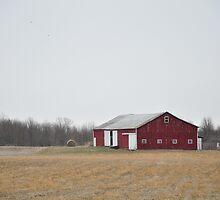 Red barn Randolph County  by mltrue