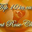 ERC Top 10 Challenge by plunder