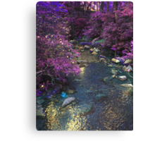 Different Aspect Brook Canvas Print