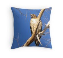 Red-tailed Hawk ~ Protective Female Throw Pillow