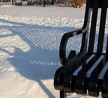 Waiting out the Winter by Murph2010