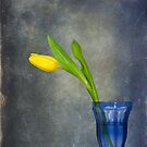 Sign Of Spring by Maria Dryfhout