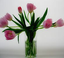 Pink Tulips in a Vase by Karen  Betts
