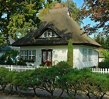 MVP45 Thatched house in Prerow, Germany. by David A. L. Davies