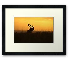 The Pride Of Nature            (Large Version) Framed Print
