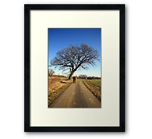 Tree and Horse Framed Print