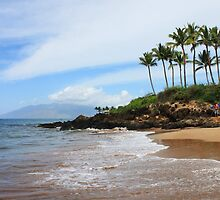Makena Beach, Maui by Natalie  Markova