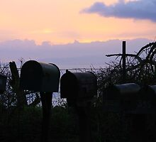 Maui Mailboxes @ Sunrise by Natalie  Markova
