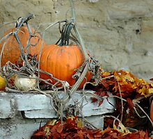 Fall Decoration by Michael Miller