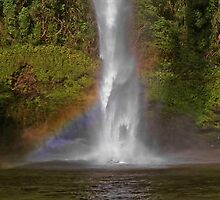 Bridal Veil Falls near Raglan New Zealand by AnnDixon
