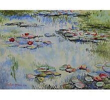 Waterlillies - after Monet Photographic Print
