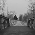 Bridge on a back road in black and white by mltrue