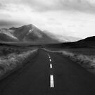 The Long Road by Paul McSherry