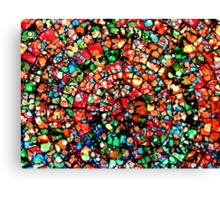In the world as we see it and Not missed it :) Canvas Print