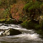 Water Breaking Over Rocks In A Welsh National Park. by miradorpictures