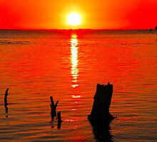 Red Sunset at Bunche Beach  115 Views by Rosalie Scanlon