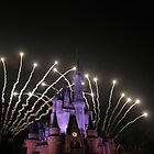 Cinderella's Castle at Fireworks by Chris Bastow