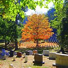 Arlington Cemetery in the Fall by ka7bzg