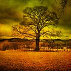 The Lone Tree. ! by Irene  Burdell