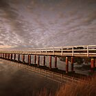 Evening At Leschenault by Chris Paddick