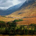On the road to Glen Coe by FLYINGSCOTSMAN