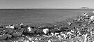 Frenchman's Cove USVI B&W by John  Kapusta