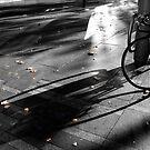 Shadow Play 2, Circular Quay  by gail anderson