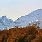 Beinn Alligin by Panalot